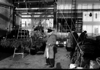 19601112 BF Weihnachtsbeleuchtung 2