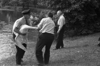 19650107 BF Tierrettung Schwan