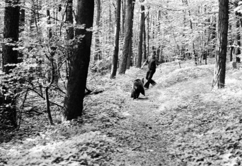 19740824 Bärenjagd Harry Linne