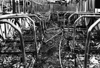19741120 Feuer Brandanschlag Busse 4
