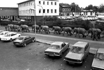 19781027 Cirkus Althoff Elefanten