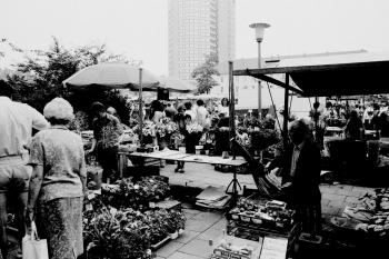 19810813 Wochenmarkt Rathaus 2