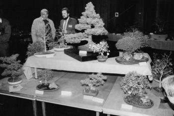 19841203 Bonsai Ausstellung, Stadthalle
