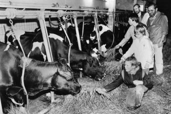 19850814 Ferien, Kinder im Kuhstall
