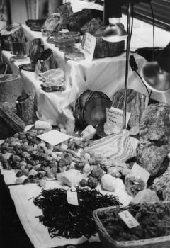 19851029 Experten auf Fossilien Börse 1