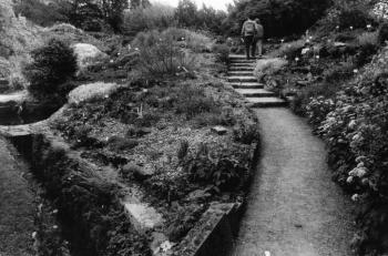 19910628 Botanischer Garten