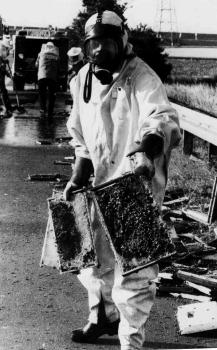 19910729 Unfall Bienen BAB 3