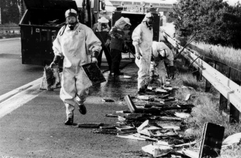 19910729 Unfall Bienen BAB 4