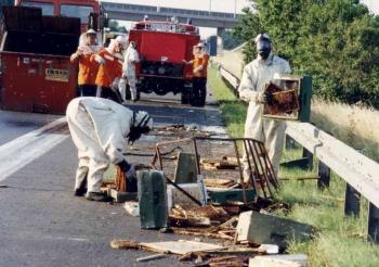 19910729 Unfall Bienen BAB 6