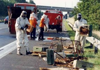 19910729 Unfall Bienen BAB 7