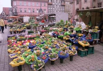 19980329 Blumenmarkt Marktplatz