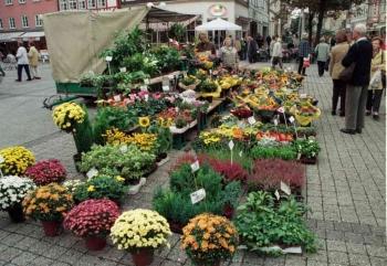 19980922 Blumen, Marktplatz