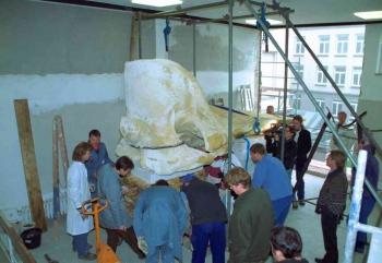 19991104 Pottwal durchs Fenster1
