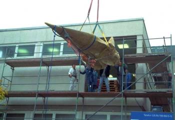 19991104 Pottwal durchs Fenster