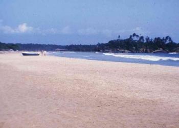 39 Strand